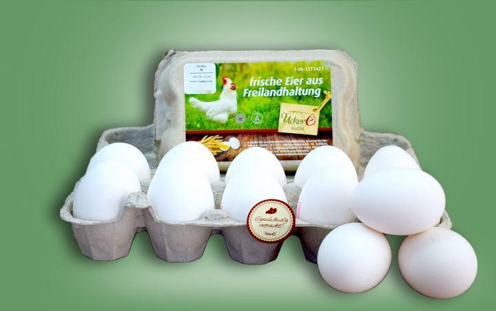 Eier aus Freilandhaltung Gr. M