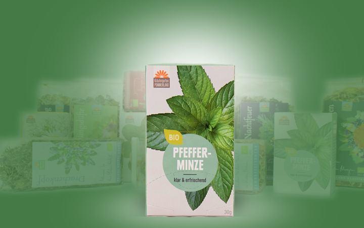 Pfefferminze-Bio-Tee im Kannenbeutel