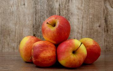 Tafeläpfel, Gala