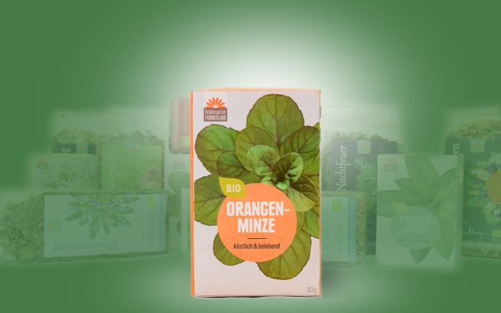 Orangenminze-Bio-Tee im Kannenbeutel